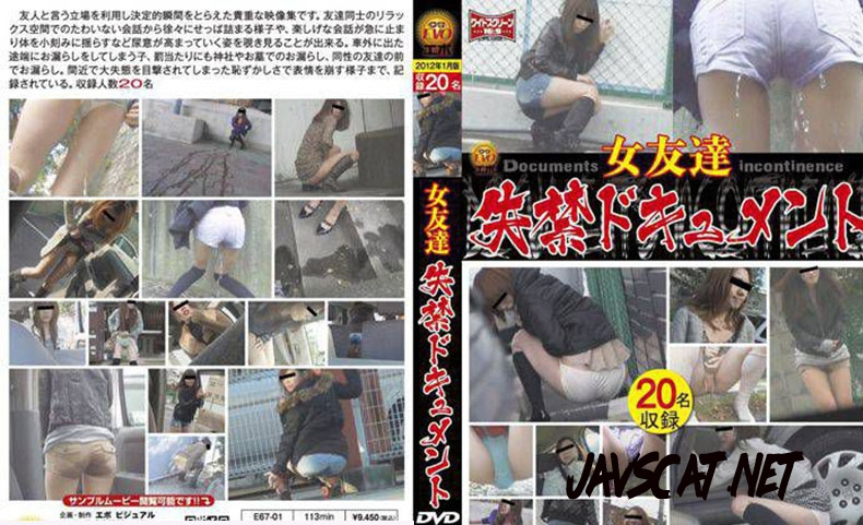E67-01 女友達 失禁ドキュメント Friend Long Fed in the Toilet (2019 | 688 MB | SD)